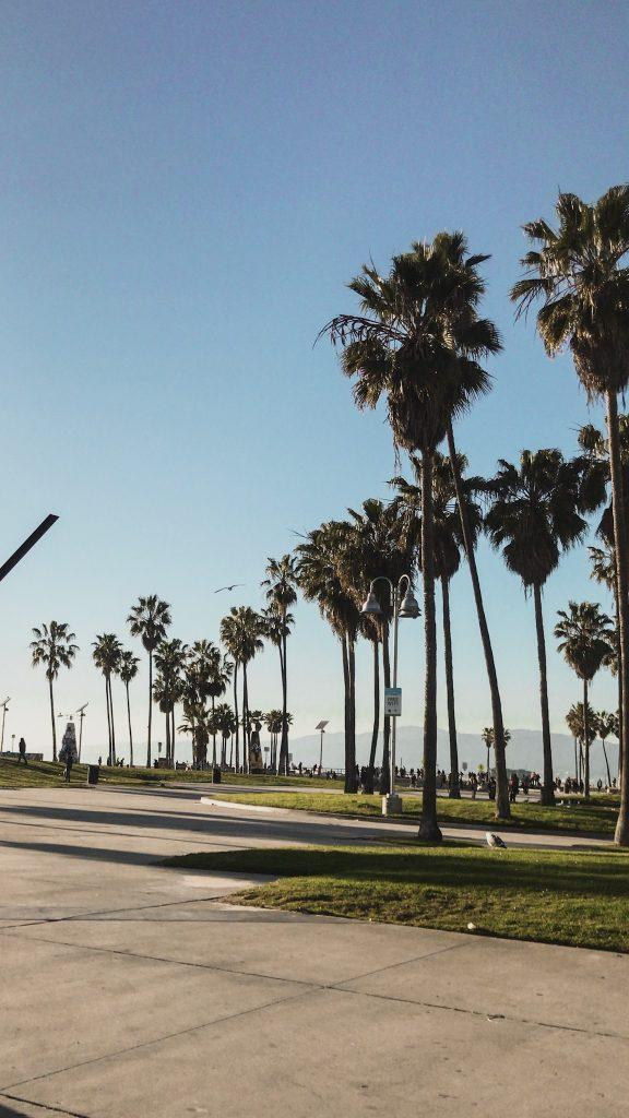 Venice Boulevard Los Angeles